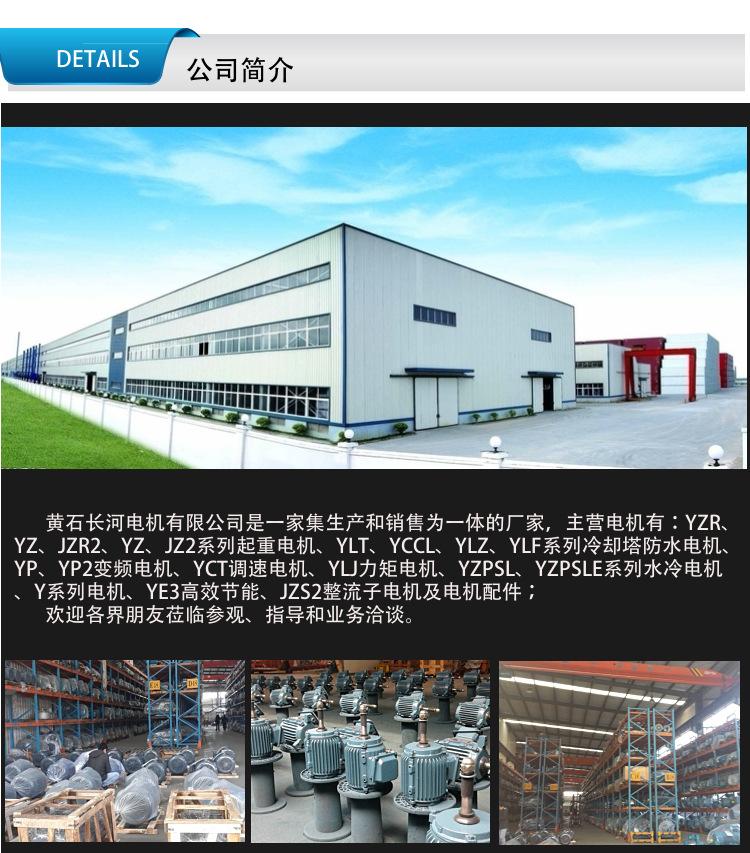 立式皮带减速电机,YCCL180L-4/22KW95953995
