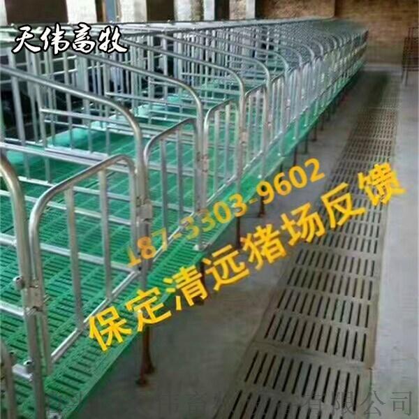 灵宝养殖母猪定位栏 保胎母猪定位栏 镀锌母猪定位栏56998885
