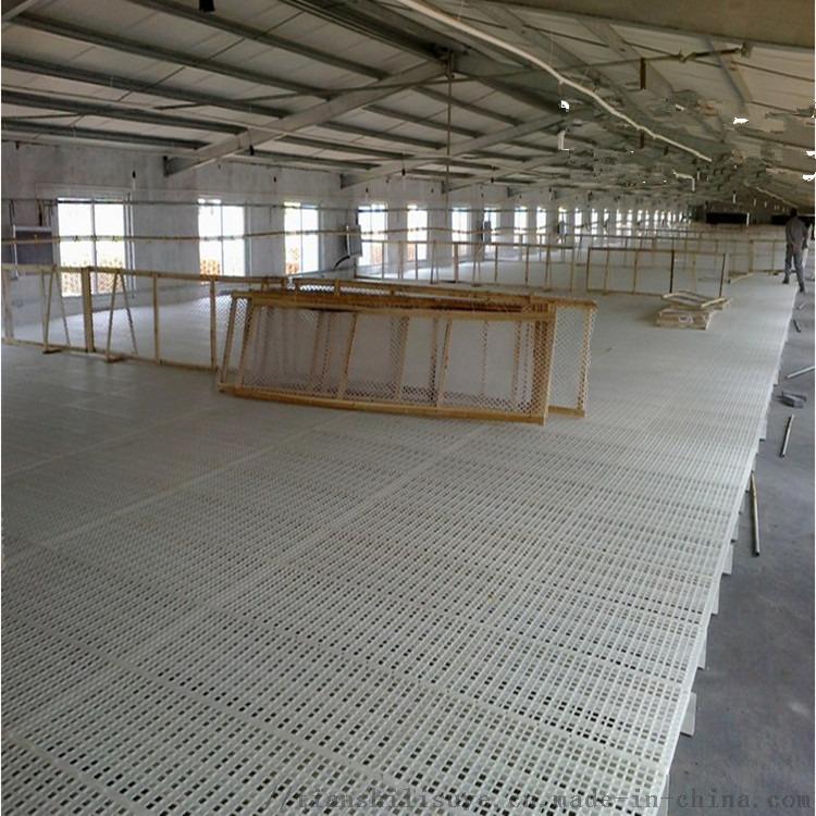 多规格鸡漏粪板鸡鸭漏粪板厂家防滑鸡漏粪板129310042
