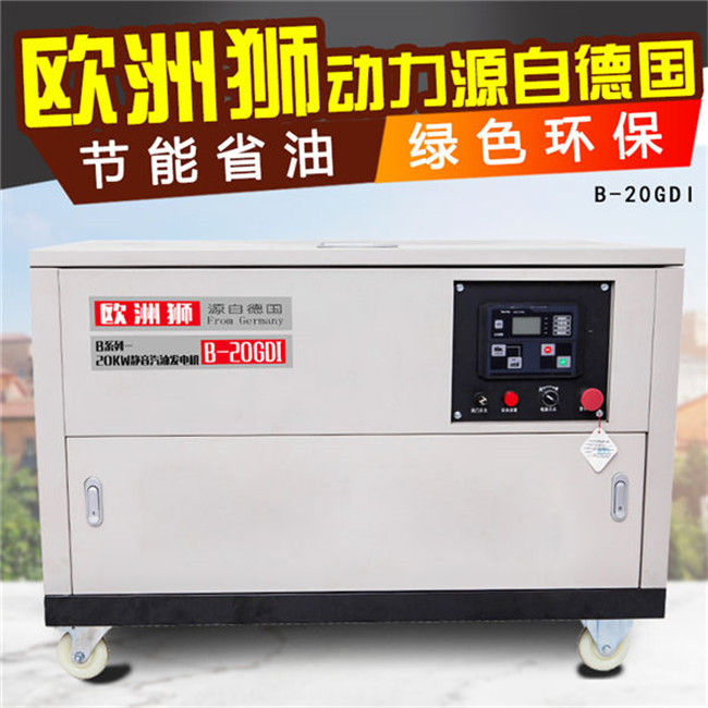 20kw汽油发电机 (7).jpg