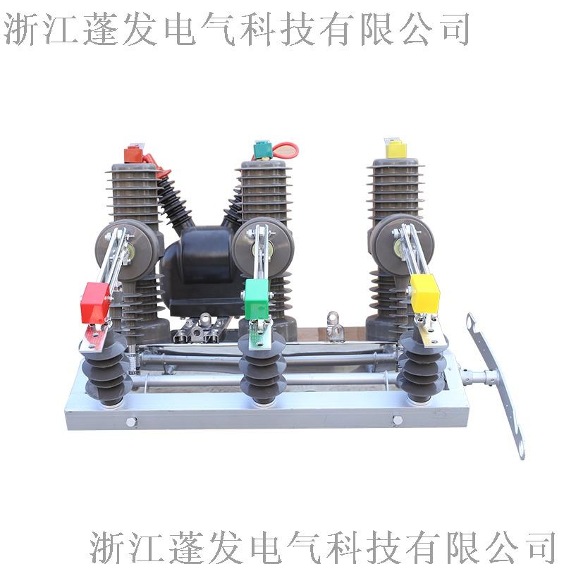zw32真空斷路器 手動隔離 柱上開關 蓬發電氣800157072