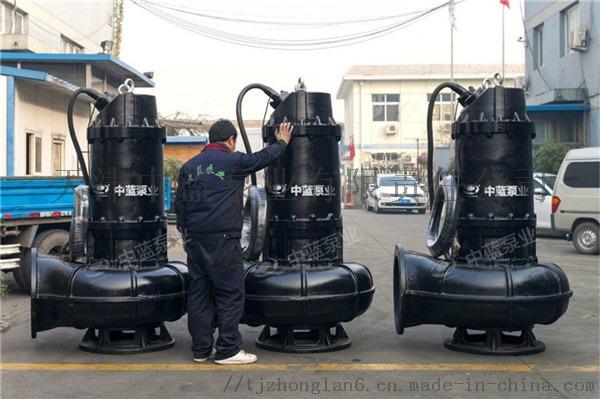 污水泵 通过能力强 寿命长 无磨损780566172