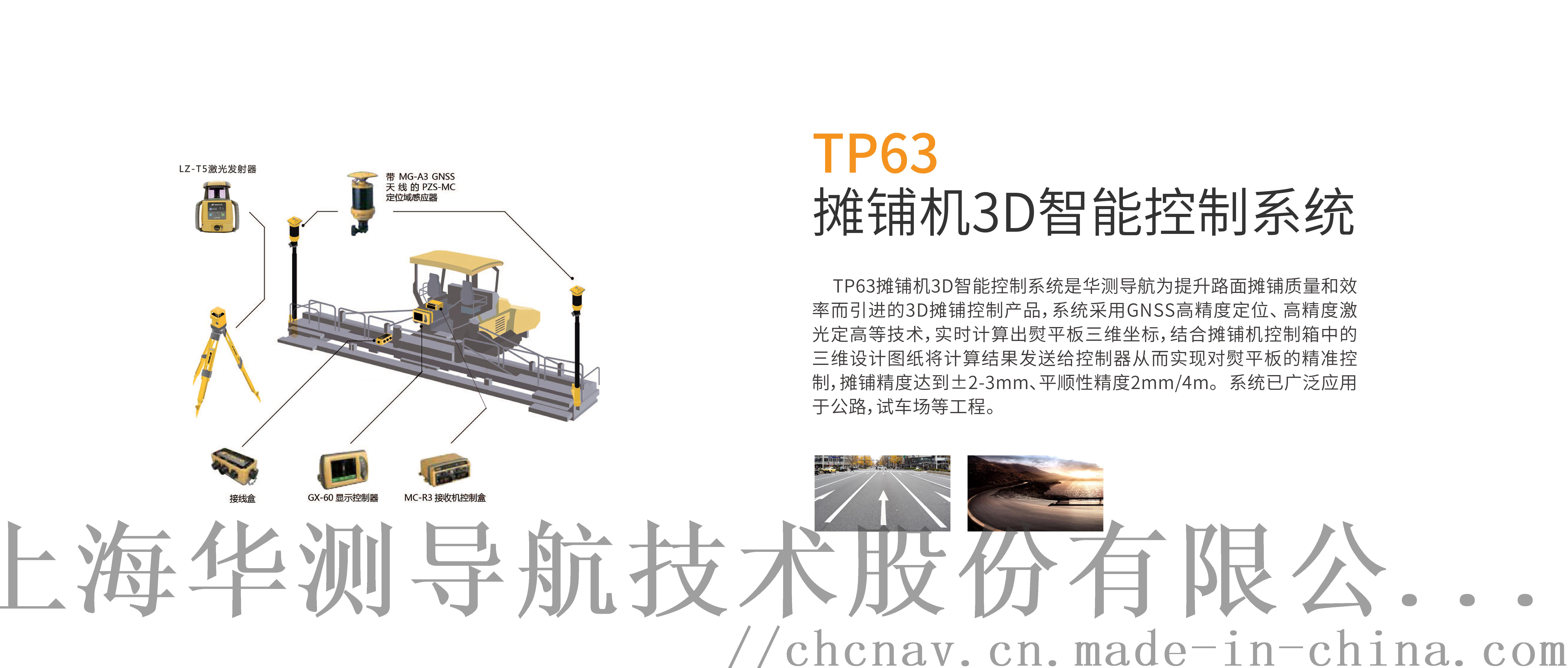 TP63.jpg