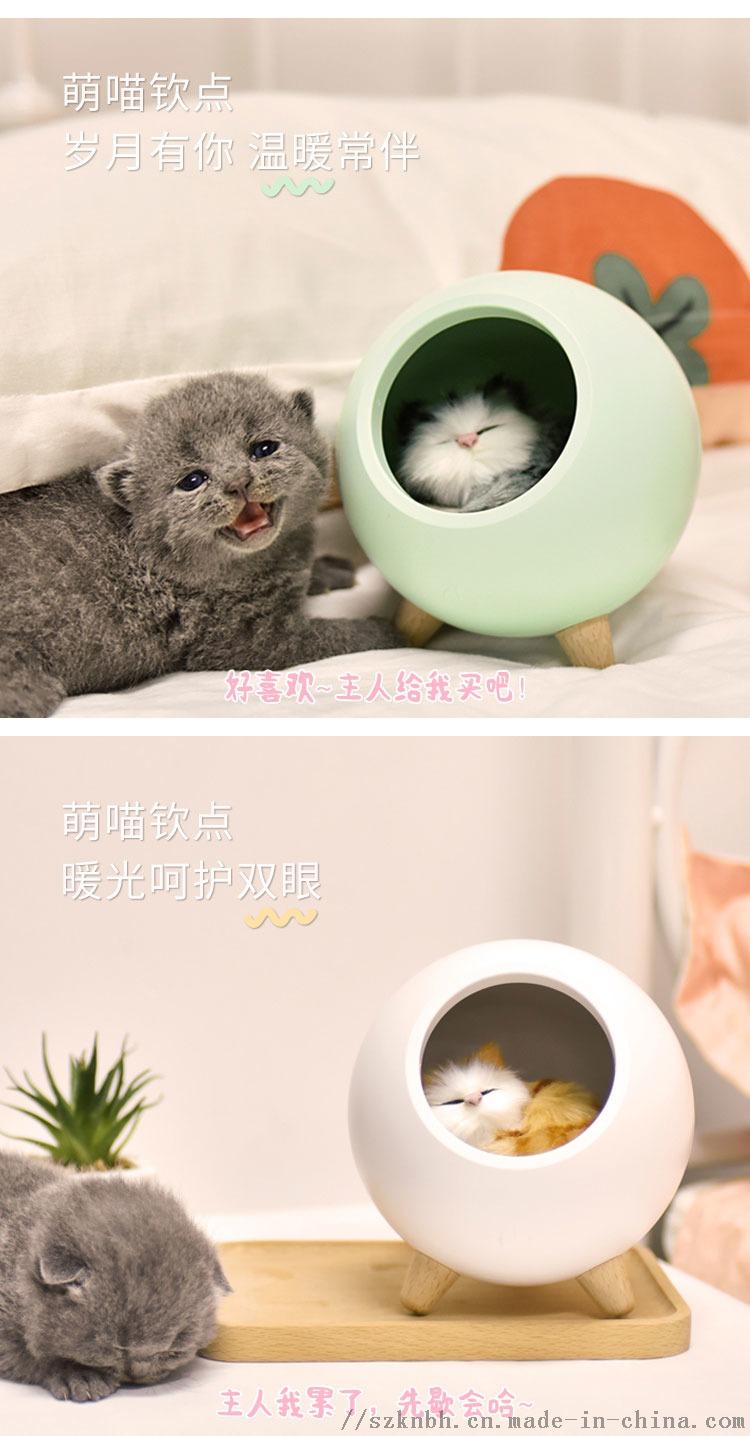 小宠屋氛围灯宣传图 (5)(1).jpg