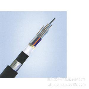GYTA53 雙鎧裝雙護套光纜