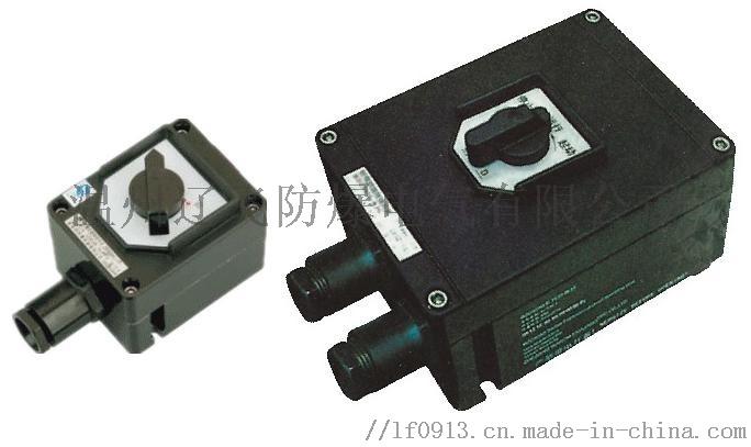 BZZ8050-32防爆防腐转换开关61540072
