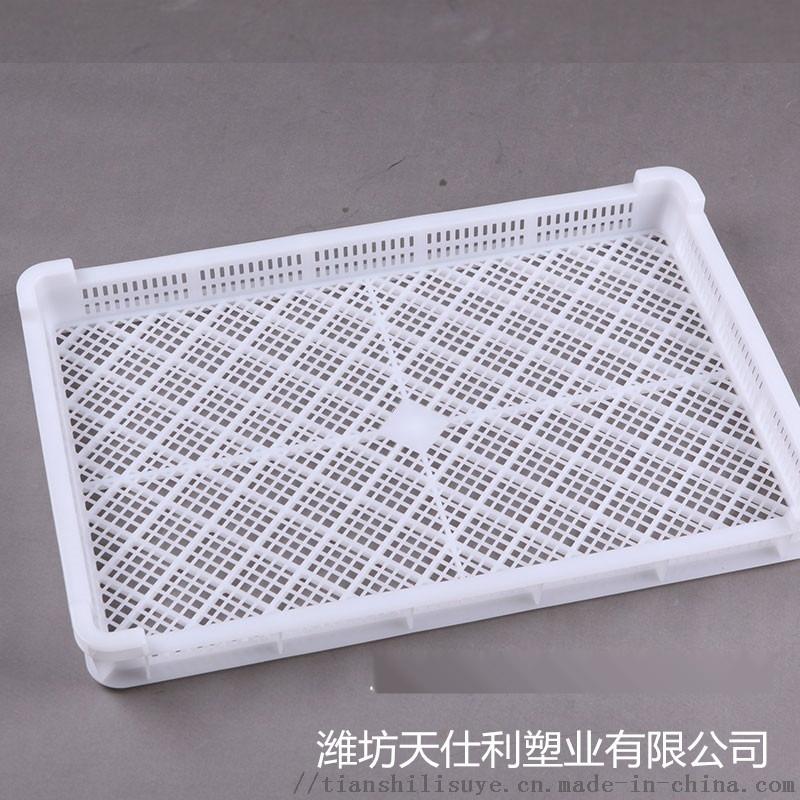 厂家直销塑料烘干盘 新疆大枣烘干盘 干果烘烤盘836383032