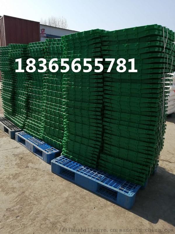 新型羊床漏粪板 塑料羊床 羊用高架床厂家845554552