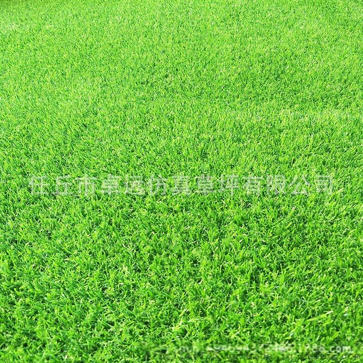 甘肃省人造草坪厂家、幼儿园休闲草坪、户外运动场地783974052