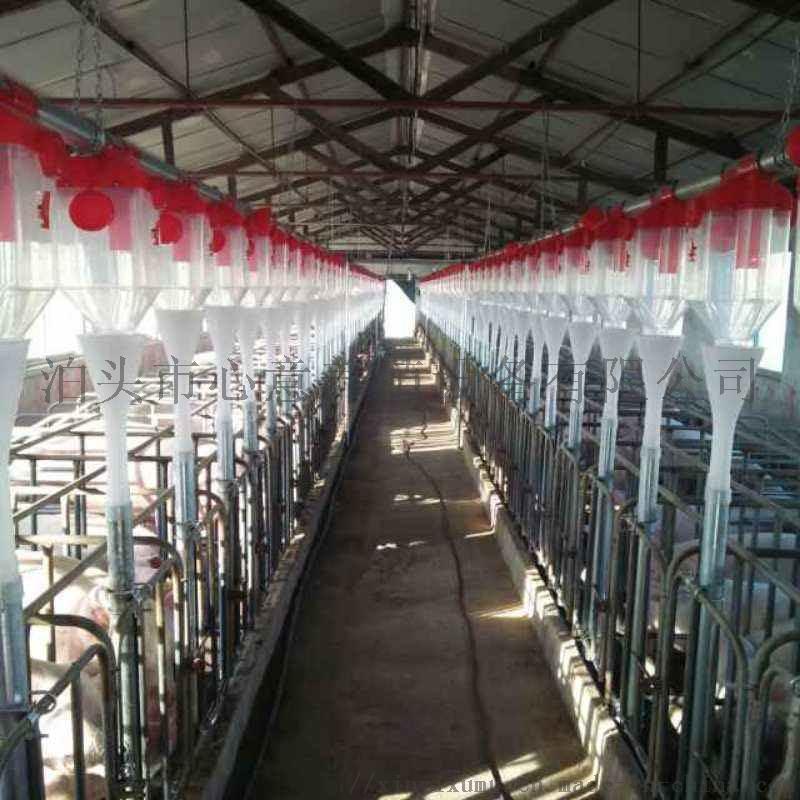 养殖场自动化喂料线养猪场自动上料全套投料系统猪舍料线养殖设备846247612