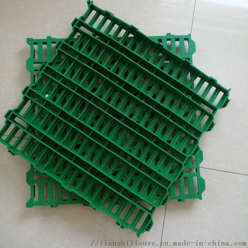 天仕利羊漏粪板塑料羊地板羊用漏粪床865700542
