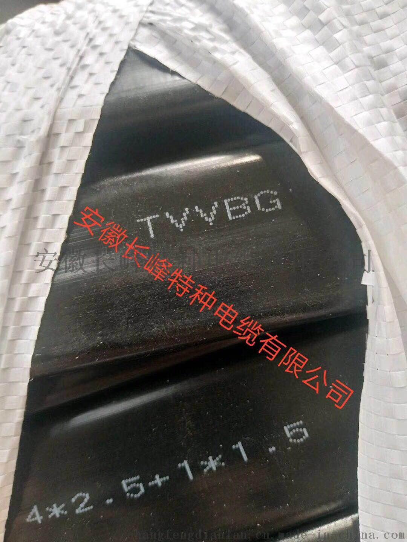 长峰特种电缆FE氟塑料绝缘烯烃护套电力电缆109939355