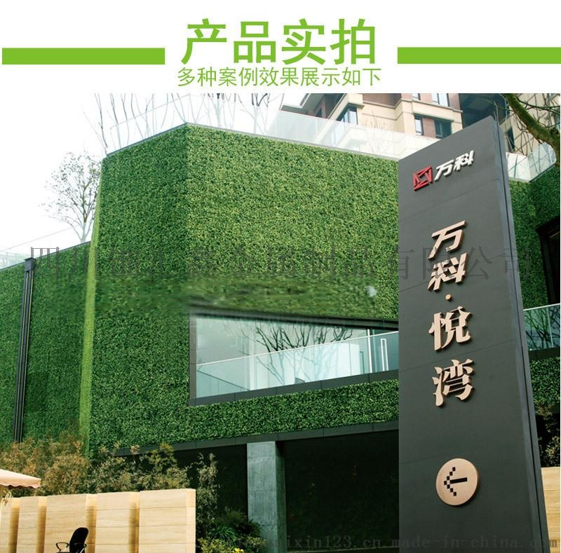 人工草坪模擬草坪圍擋學校足球場人造草坪鋪設762549712