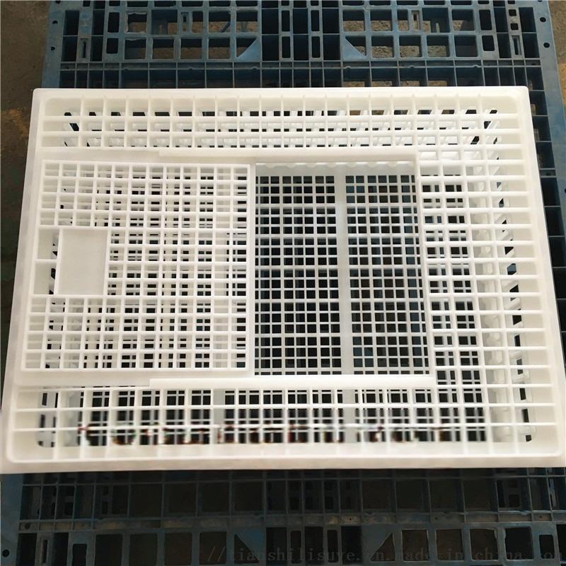 装鸡用塑料鸡笼子 装鸡鸭塑料笼子 装鹅用塑料笼子113059462