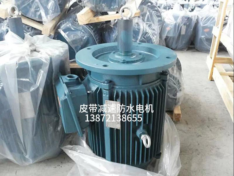 11KW冷却塔电机,户外露天用,防水等级高98340255