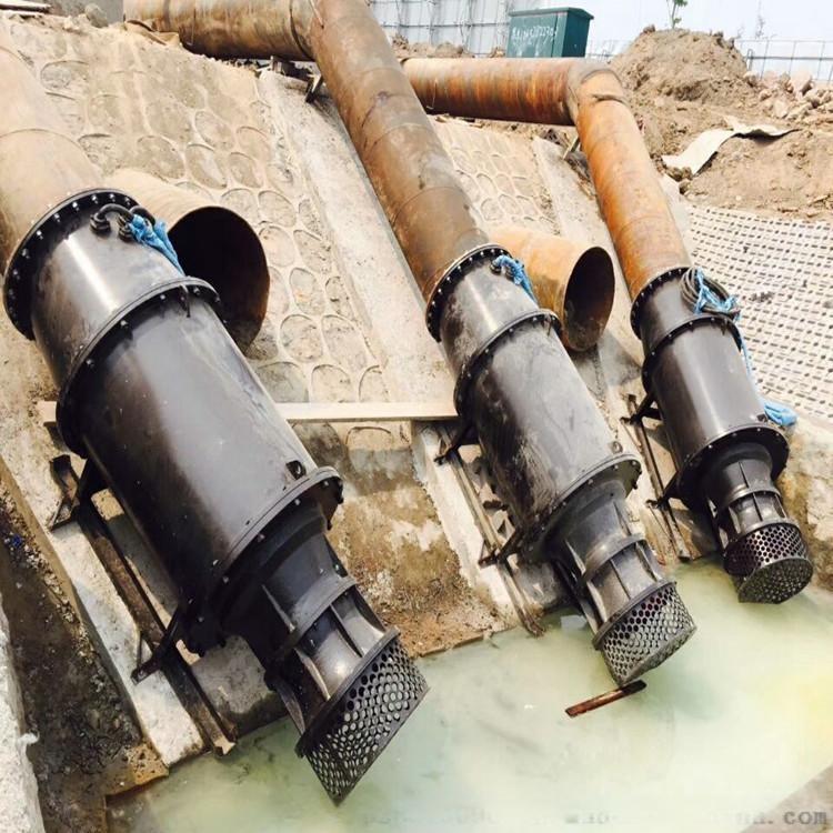 轴流泵 天津两型潜水电泵,可供农田排灌之用823764622