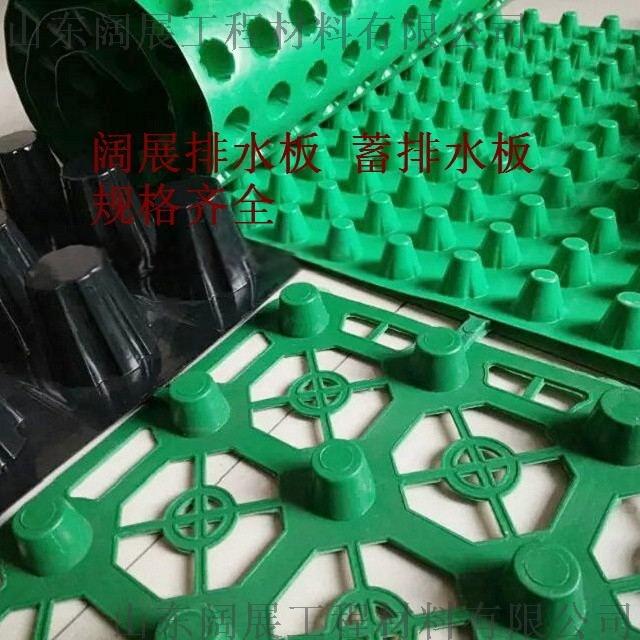 加强型蓄排水板施工方案67869292