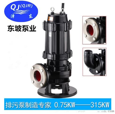 天津切割式(不锈钢)潜水排污泵101718002