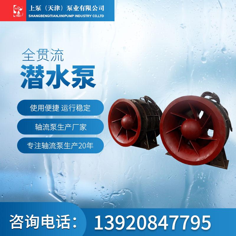 全贯流潜水泵-1.jpg
