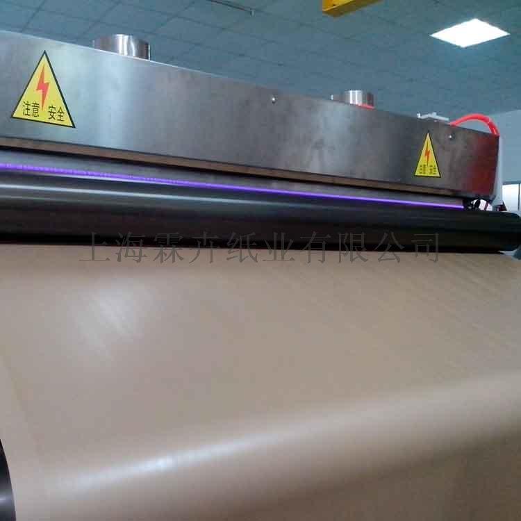 115克俄罗斯牛皮纸 冷冻食防潮包装 高挺度牛皮纸827949882