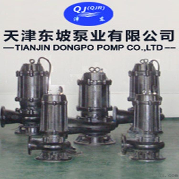 天津切割式(不锈钢)潜水排污泵101718052
