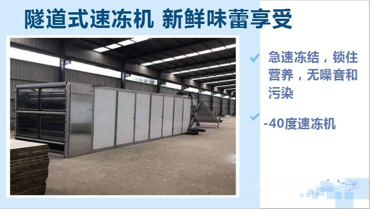 隧道式速冻机模板1.jpg