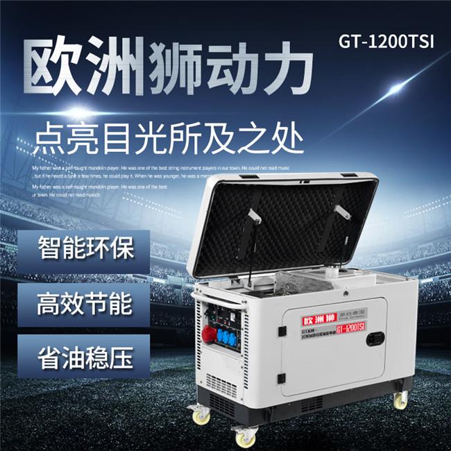10kw柴油发电机价格 (9).jpg