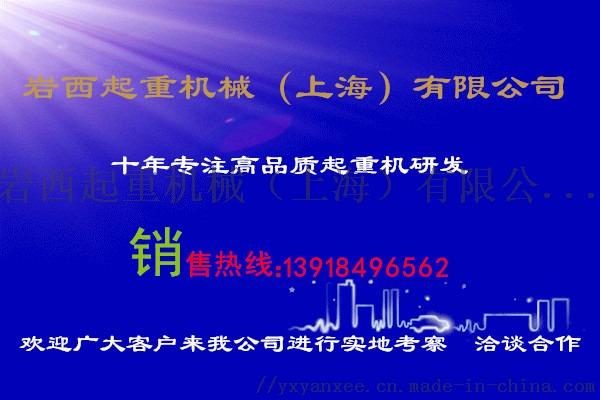 德马格电动环链葫芦/1t德马格电动葫芦54408372