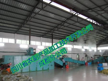 南瓜粉生产线,南瓜全粉设备21214492