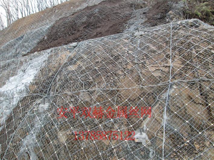 主动边坡防护网¥ 落石防护网 ¥钢丝绳网厂家697288672
