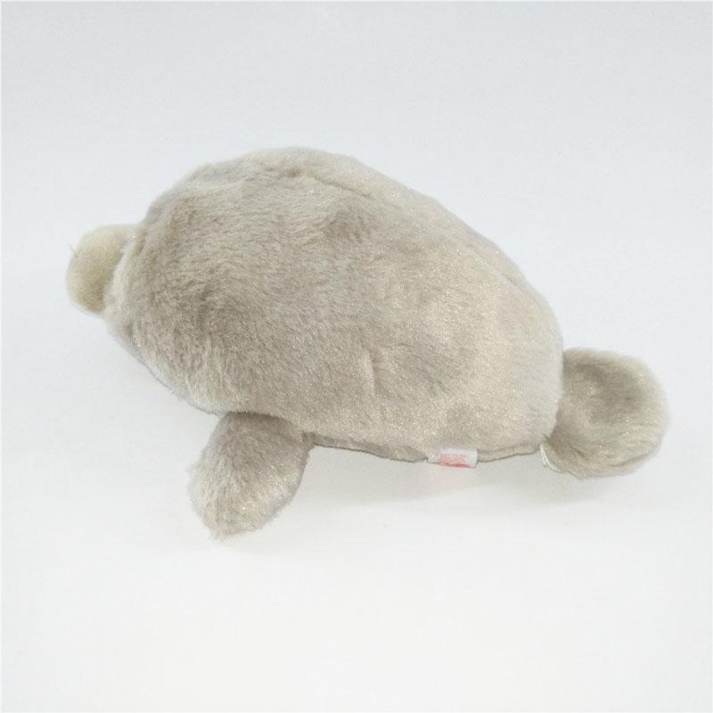 灰色海狮 (5).jpg