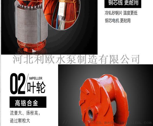 利欧ZJQ潜水渣浆泵32ZJQ-8.5-6-K106768635