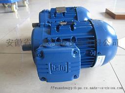 英国BROOK CROMPTON电机L351114121652