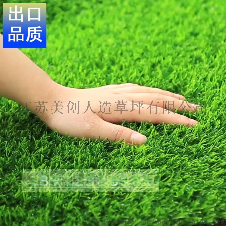 草坪主圖2.jpg