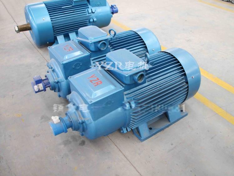 YZR电机   (2)