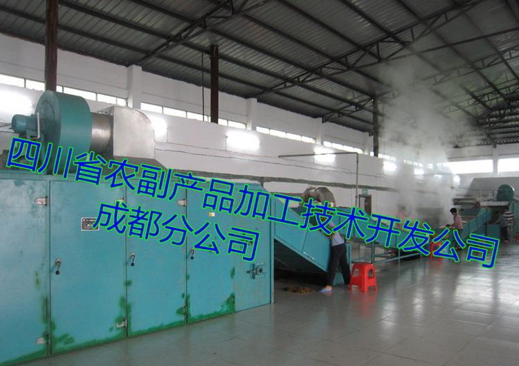 脱水蔬菜生产线,脱水蔬菜加工设备,蔬菜脱水干燥设备21256292