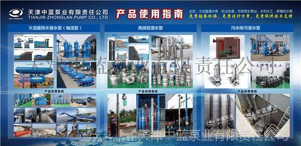 潛水軸流泵 水利工程專用大流量潛水泵91043262
