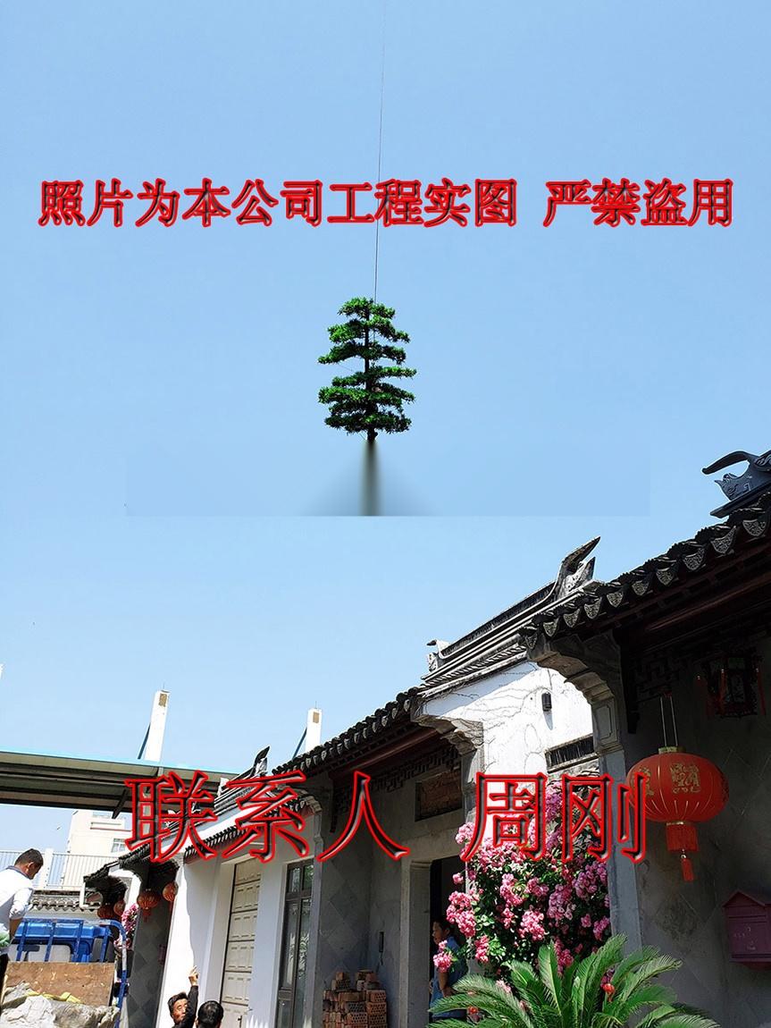 苏州别墅绿化工程 庭院苗木种植基地 园林绿化设计882544515