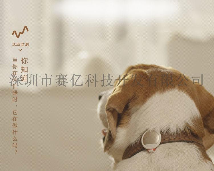 智慧寵物項圈_09.jpg