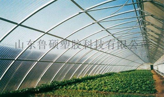 菏澤陽光板價格