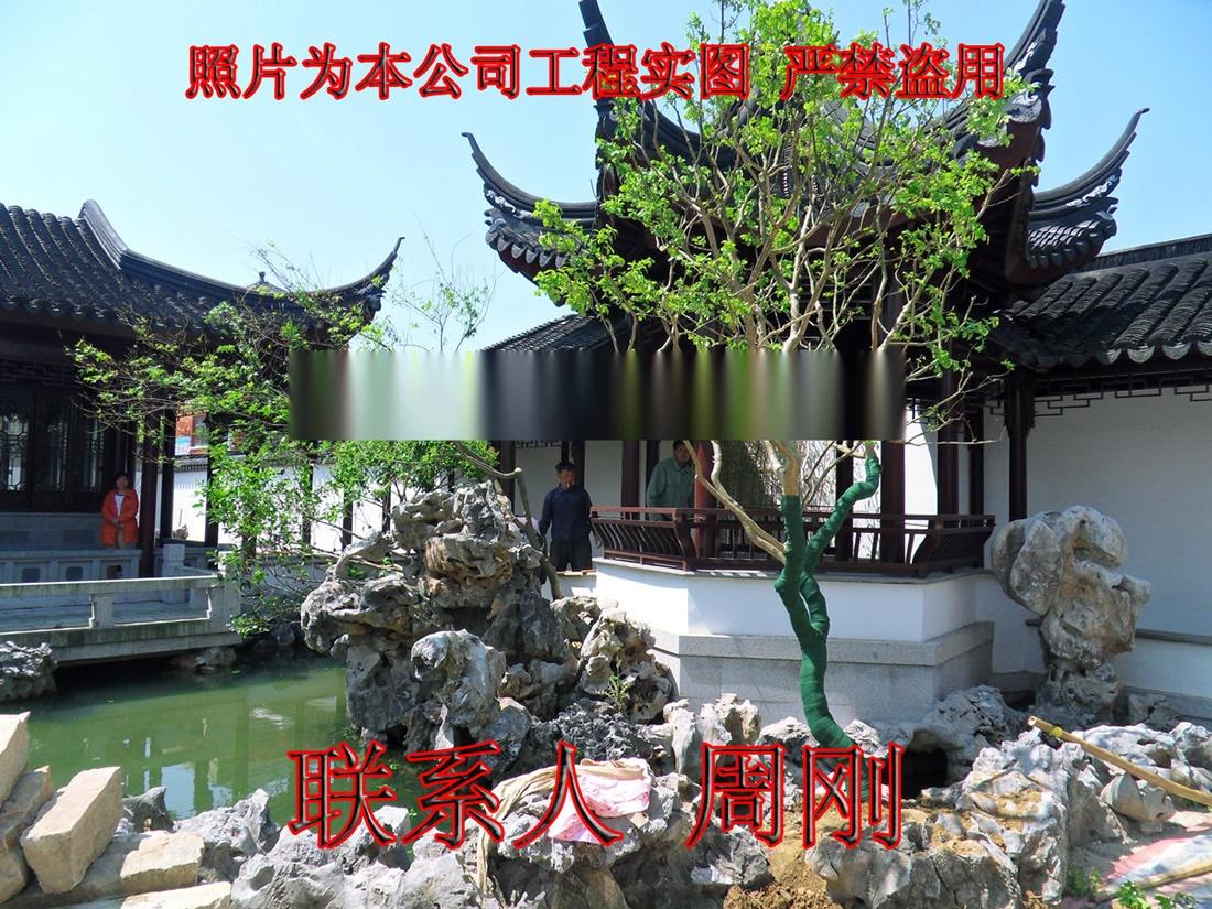 苏州别墅绿化 庭院景观绿化工程 别墅苗木培育基地899698365