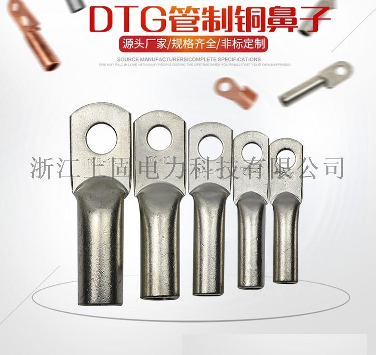 DTG 6.jpg