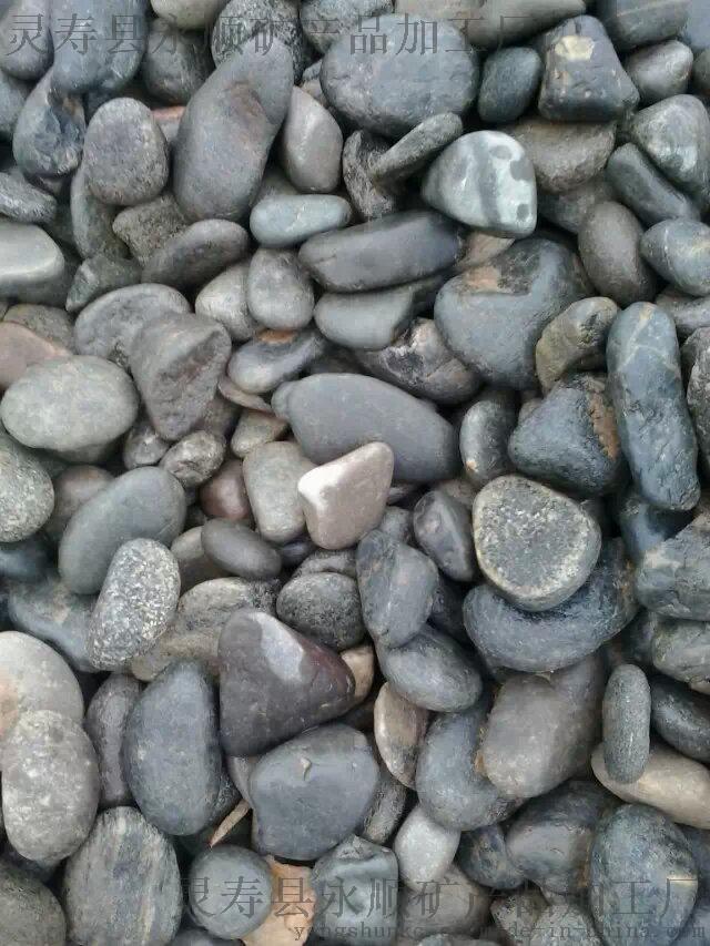 河北50-80毫米天然鹅卵石生产厂家35442372