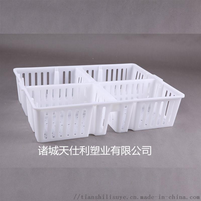 天仕利鸡苗箱 鸡苗运输箱 四格鸡苗运输箱898015705