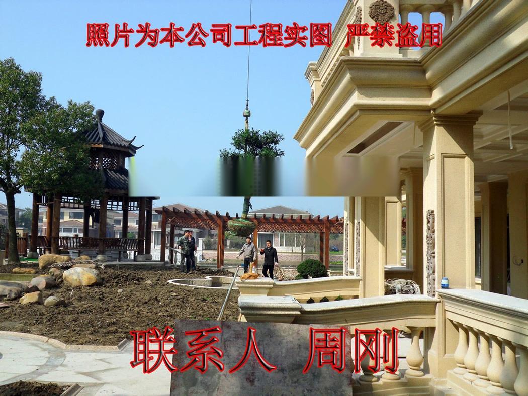 苏州别墅绿化工程 庭院苗木种植基地 园林绿化设计882544495