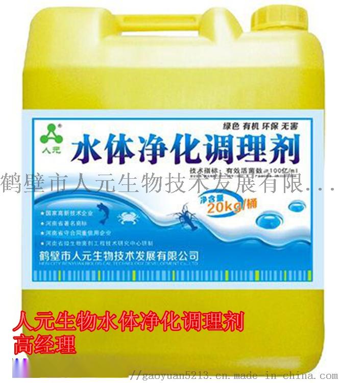 水体环境调理菌优质供货厂家-鹤壁人元生物754357972