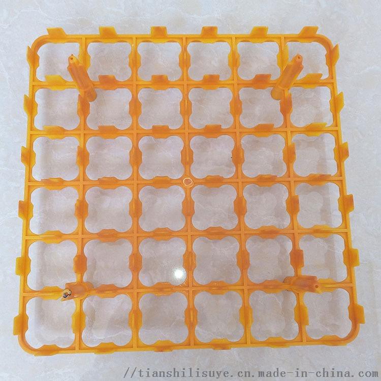 厂家直销塑料蛋托36枚塑料蛋托盘30枚蛋托856845482