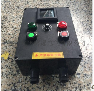 FZC-S-A2B1D2G三防操作柱61383232
