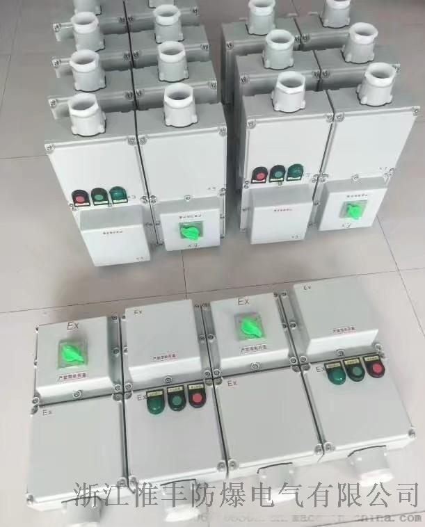 可逆电机防爆电磁启动器BQC848974175