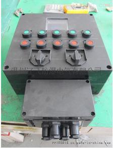 FXM-S-4/16K63防水防尘防腐配电箱61404832